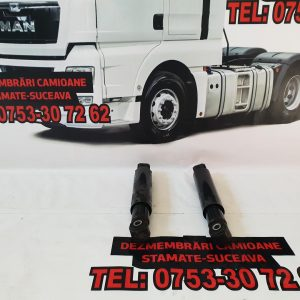 Amortizor Axa Fata Man cod 81437026058